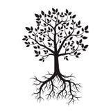 Черные дерево и корни также вектор иллюстрации притяжки corel бесплатная иллюстрация