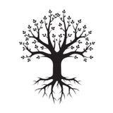 Черные дерево и корни также вектор иллюстрации притяжки corel Стоковое Изображение RF