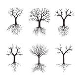 Черные деревья без листьев также вектор иллюстрации притяжки corel Стоковые Изображения