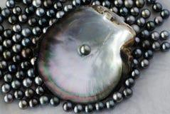 Черные жемчуга стоковые фотографии rf