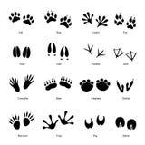 Черные животные установленные следы вектор Стоковая Фотография