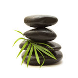 черные зеленые камни листьев Стоковая Фотография RF