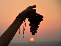Черные израильские виноградины Стоковое фото RF