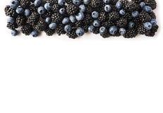 Черные и голубые ягоды на белизне Взгляд сверху Зрелые ежевики и голубики на белой предпосылке Ягоды на границе острословия изобр стоковое изображение