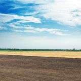 Черные и золотые поле и облака земледелия в голубом небе Стоковые Фото