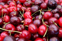 Черные и красные вишни, конец-вверх Стоковое Изображение RF