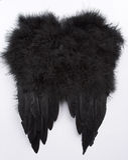 черные крыла Стоковые Фото