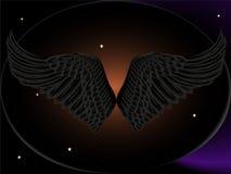 черные крыла Стоковая Фотография