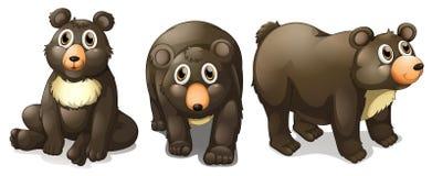 Черные медведи иллюстрация штока