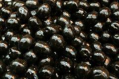 черные оливки Стоковые Фото