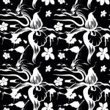 черные орхидеи иллюстрация вектора