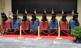 Черные лошади на линии Стоковое Изображение