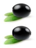 черные оливки Стоковая Фотография RF