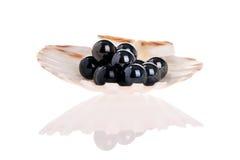 черные перлы Стоковые Изображения RF