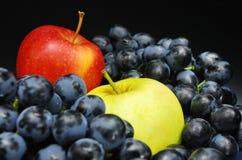 черные плодоовощи стоковые изображения rf
