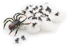 Черные резиновые пауки Стоковые Изображения RF