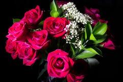 черные розы Стоковые Фото