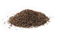 черные семена макроса тимона Стоковые Фото