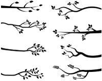 Черные силуэты ветви дерева Иллюстрация вектора