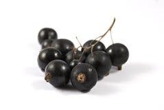 черные смородины Стоковая Фотография RF