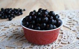 Черные смородины в красном шаре Стоковая Фотография RF