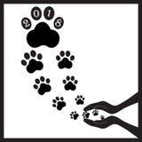 Черные собаки следов ноги в руках Стоковое Изображение