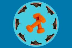 Черные тапки помещены вдоль края голубого взгляда со стороны круга, в центре пары оранжевых гантелей на голубом backg Стоковые Фотографии RF