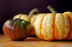 Черные томат Heirloom и сквош масленицы Стоковая Фотография RF