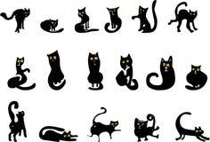 черные установленные коты Стоковые Изображения