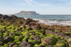 Черные утесы лавы покрытые с морской водорослью на острове Jeju Стоковые Фотографии RF