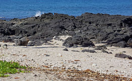 Черные утесы лавы Стоковая Фотография