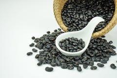 Черные фасоли Стоковое Изображение