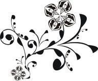 черные цветки фантазии Стоковые Изображения