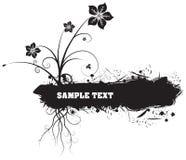 черные цветки Стоковое Изображение