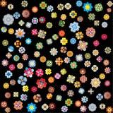 черные цветки Стоковая Фотография RF