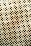черные cream многоточия Стоковая Фотография