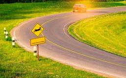 Черный автомобиль SUV туриста управляя с осторожностью во время перемещения Стоковые Изображения RF