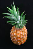 черный ананас весь Стоковое Фото