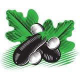 Черный баклажан Стоковое Изображение RF