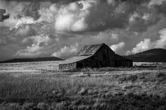 Черный белый амбар в поле Стоковая Фотография RF