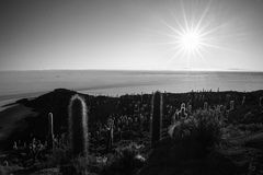 Черный & белый, звезда солнца над солью плоским, Боливией Uyuni Стоковое Изображение