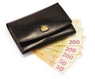 Черный бумажник и кредитки евро изолированные на белизне Стоковое фото RF
