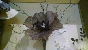 Черный бумажный цветок где-то в Париже, Франции стоковые изображения