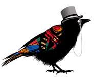 Черный ворон с шляпой Иллюстрация штока