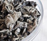 Черный грибок стоковая фотография