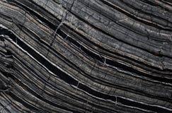 Черный деревянный камень Стоковая Фотография
