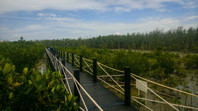 Черный деревянный мост Стоковые Изображения RF