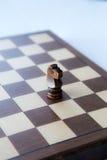 Черный деревянный рыцарь шахмат Стоковые Изображения
