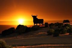 Черный заход солнца быка Стоковое фото RF