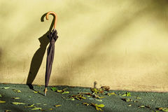 Черный зонтик около зеленой стены grunge Стоковое Изображение